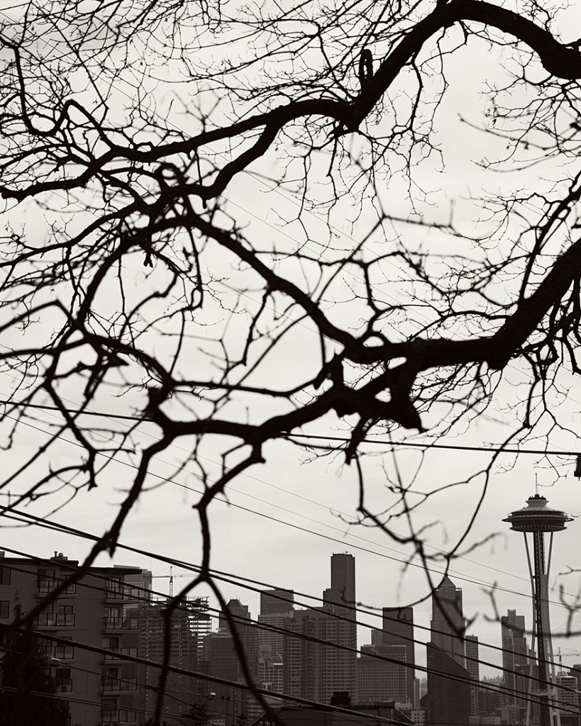 Seattle and Snowqualmie 04